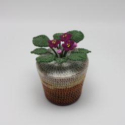 Cosulet violete crosetate mov